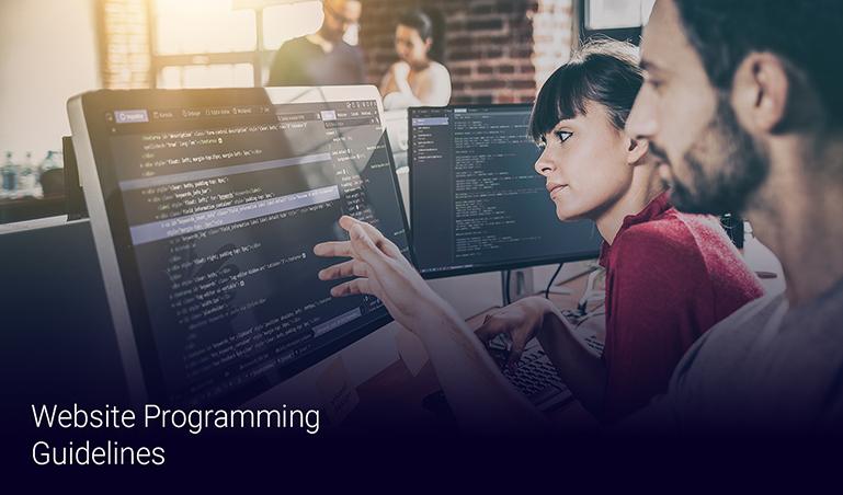 Milestone's Top 10 Website Programming Guidelines