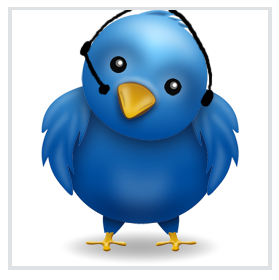 twiiter bird