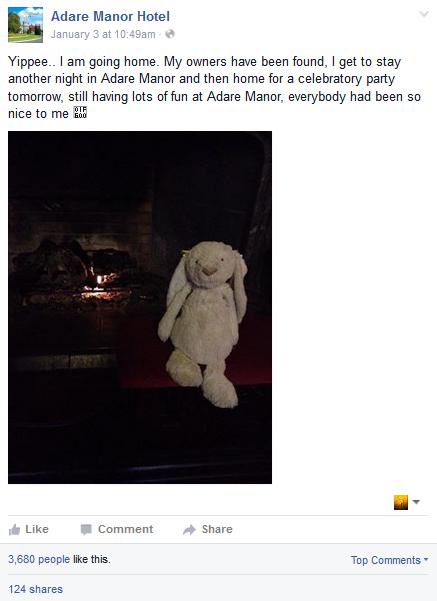 Social bunny story